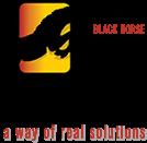 BlackHorse Logo